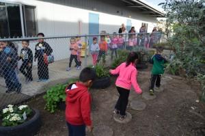 Preschool-Garden-After-1