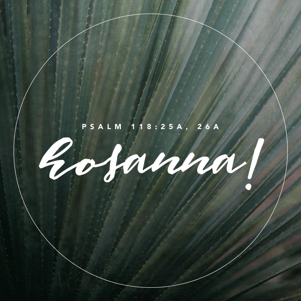 28_Psalm-118-25a,-26a